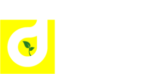 D.B.S. Groupe